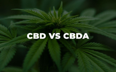 Difference between CBD and CBDa?