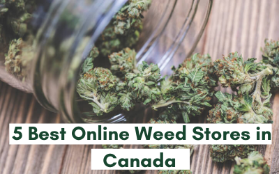 5 Best Online Weed Stores in Canada in 2021